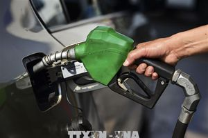 Nguồn cung sắp bị thắt chặt, giá dầu châu Á tăng mức cao nhất kể từ 2014