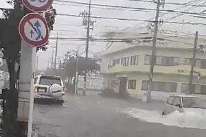 Người dân Nhật Bản lao đao trong gió bão Trami