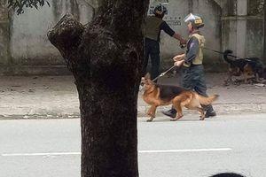 Nghệ An: Vây bắt đối tượng ôm súng và lựu đạn cố thủ trong nhà