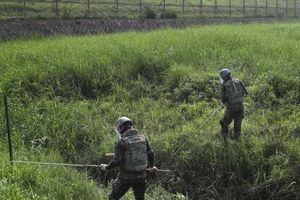 Hai miền Triều Tiên bắt đầu tháo gỡ bom mìn khỏi khu phi quân sự