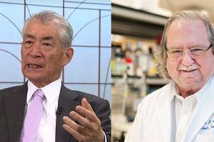 Liệu pháp trị ung thư giành Nobel Y học