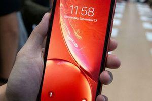 Cảnh báo iFan: iPhone Xr có thể thiếu hàng giai đoạn đầu