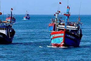 Kinh tế khu vực ven biển chiếm 60 - 70% GDP