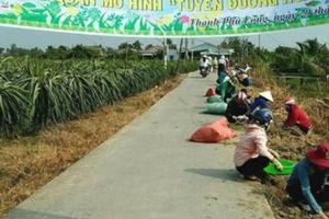 Châu Thành 'đặt một chân' tới đích nông thôn mới