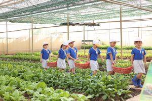 Hà Nội: Tổ chức tập huấn chuyên đề quản lý nuôi dưỡng, VSATTP cấp học mầm non