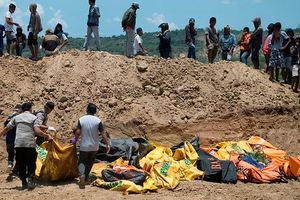 Tang thương trên đảo Sulawesi