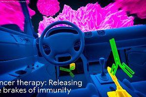 Liệu pháp miễn dịch giành giải Nobel Y học, giấc mơ của mọi nhà khoa học