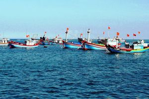 Chính sách bồi thường khi nhà nước thu hồi khu vực biển vì mục đích quốc phòng