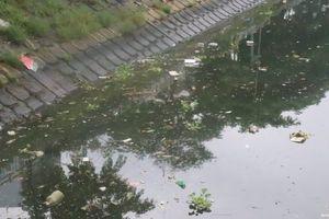 Đà Nẵng: Sau mưa, rác 'xâm chiếm' lòng sông, bãi biển