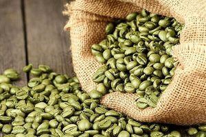 Công dụng giảm cân, giảm mỡ máu của cà phê xanh