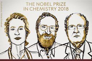 Học thuyết Darwin 'góp phần' vinh danh chủ nhân Nobel Hóa học 2018