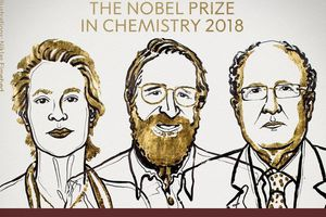 Nobel Hóa học 2018 cho nghiên cứu 'Darwin trong ống nghiệm'