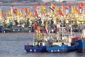 Hạm đội đánh cá của Trung Quốc 'quét sạch' đại dương
