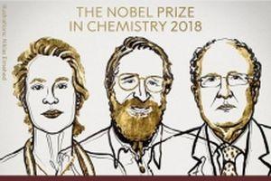 Nobel Hóa học 2018 vinh danh nghiên cứu 'khai thác sức mạnh của tiến hóa'