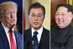 Cân tài 3 ứng viên sáng giá của giải Nobel Hòa bình 2018