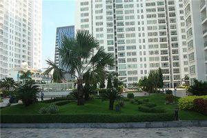 Chây ỳ bàn giao phí bảo trì, chủ đầu tư chung cư New Sài Gòn bị phạt