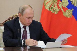 Tổng thống Putin: 'Năm 2019 là năm Nga- Việt, Việt-Nga'