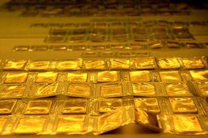 Giá vàng ngày 3/10: Kim quý vàng quay trở lại đà tăng