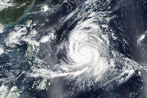 Thêm siêu bão Kong-rey sức gió 240 km/giờ hướng về Nhật Bản, Đài Loan