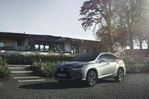 Lexus vừa mắt 2 mẫu RX mới tại thị trường Việt Nam