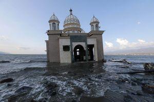 Những điều bất thường của thảm họa động đất, sóng thần ở Indonesia