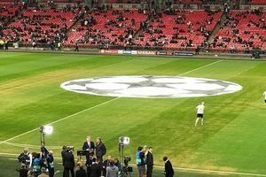CĐV Tottenham so sánh mặt cỏ sân Wembley với ruộng khoai