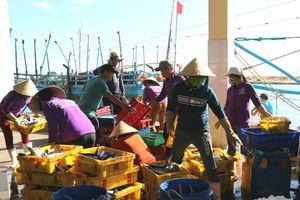 Xử lý nghiêm tàu cá lắp đặt thiết bị giám sát hành trình nhưng không mở máy 24/24 giờ
