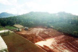 San bạt núi đồi đe dọa hồ cấp nước sinh hoạt của TP Đà Lạt