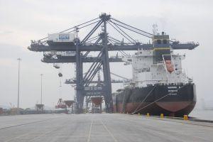 Tín hiệu tích cực nhờ triển khai Hệ thống VASSCM tại cảng Cái Lân