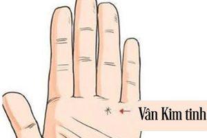 4 đường chỉ tay đặc biệt giúp thăng quan tiến chức, phú quý song toàn