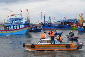 Phát triển kinh tế biển gắn với đảm bảo quốc phòng - an ninh tại Bình Định: Gặt hái được thành tựu nổi bật