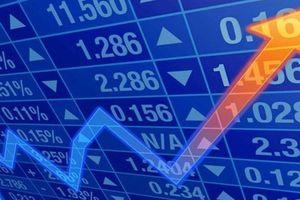 Đề xuất siết chặt đối tượng tham gia chào bán chứng khoán riêng lẻ