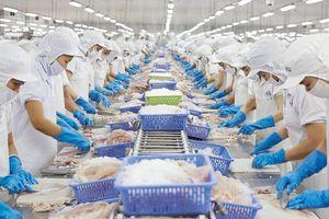 Thủy sản: cơ hội mới xuất khẩu sang Mỹ, Trung Quốc
