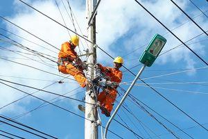 Tập đoàn Điện lực Việt Nam sắp bán đấu giá cổ phiếu Thiết bị điện Đông Anh