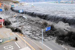 Việt Nam có phải đối mặt với sóng thần?