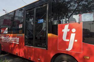 Xe buýt BRT: Các mô hình trên thế giới đã thành công như thế nào?