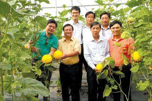 Nông nghiệp công nghệ cao không phải cây đũa thần!