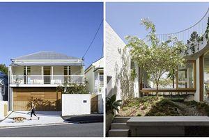 Nhà 2 tầng giản dị tràn ngập cây xanh ai cũng mê