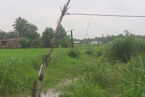 Một phụ nữ bị điện giật chết khi cắt cỏ cho bò ăn
