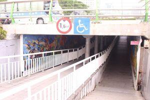 Đà Nẵng yêu cầu tháo dỡ cặp tranh kỷ lục ở hầm đi bộ Cầu Rồng