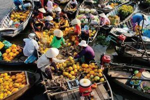 Phát triển nông thôn Đồng bằng sông Cửu Long phải gắn với liên kết vùng