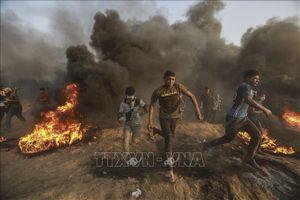 Israel tăng cường lực lượng trên quy mô lớn dọc theo biên giới với Dải Gaza