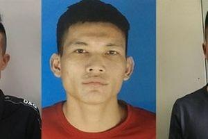 Quảng Ninh: Bắt nhóm đối tượng trong vụ án giết người, vứt xác