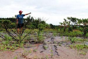 Lâm Đồng: Chất thải rắn từ dự án Bauxite Tân Rai gây ô nhiễm môi trường