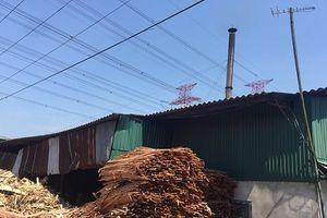 Hà Nội: Có hay không việc nhà máy gỗ ép TTTK gây ô nhiễm môi trường?