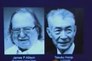 Khám phá của hai nhà khoa học đạt giải Nobel Y học 2018 có thể giúp điều trị ung thư