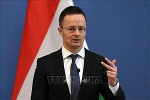 Hungary trục xuất lãnh sự Ukraine, căng thẳng ngoại giao leo thang