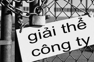 Nhiều doanh nghiệp Việt phá sản vì không biết chia lợi nhuận