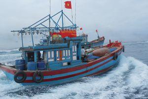 Chuyện ngư dân vươn khơi Hoàng Sa bất chấp Trung Quốc cấm biển nguy hiểm