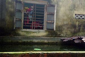 Vụ cháu bé 4 tháng tuổi chết bất thường trong hồ cá: Nghi can là cô bé 15 tuổi bị tâm thần